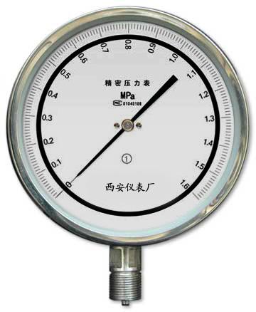 YB150精密壓力表
